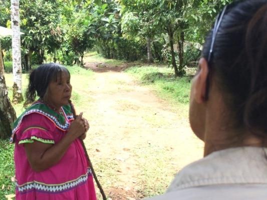 Indigene Projekte