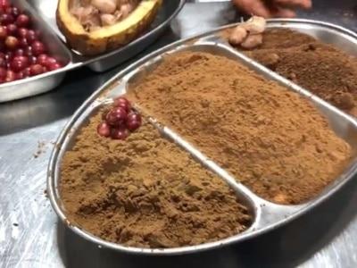 Kakaofrucht (Pulver) & Cafe