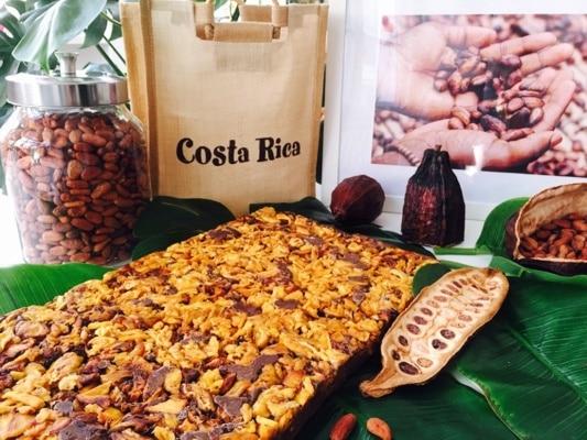 Kakao und Schokoladen Verkostung